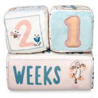 Winnie The Pooh Plush Milestone Blocks For Baby Winnie The Pooh Plush New Baby Products Baby Kicking
