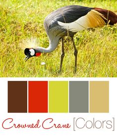 Kenya & Safari Inspired Nursery Color Palette. Different, but I love the green/gray/tan, with pops of red and grown!