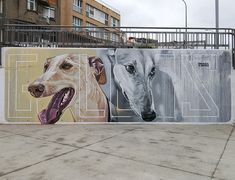 "Street art | Mural ""Galgos"" (Canodromo Park / Schamann / City Hall of Las Palmas de Gran Canaria, 2013) by Sabotaje Al Montaje"