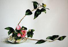 Marie-claire-houmeau-ikebana-camelia.Jpg (787×550)