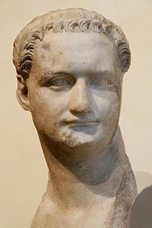 Bust of Domitian, son of Vespasian, younger brother of Titus, and the 11th emperor. Domitian reigned from 81 to 96, and left no heir when he was assassinated, thereby ending the Flavian dynasty.