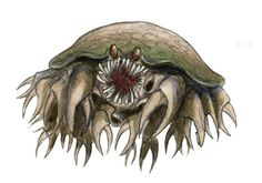 Traîcousse- French myth: a giant crab water bogey that lives in the deepest part of the river. It has blood shot eyes, brownish scales, shark-like teeth, and countess pincer legs. It eats animal and humans, especially likes children. Every so often it vomits up the skin and bones of its victims.