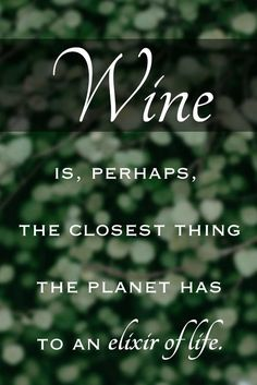 Wine is, perhaps, the closest thing the planet has to an elixir of life. – Thom Elkjer View more #wine quotes on our blog!