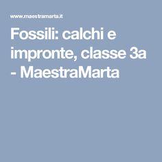 Fossili: calchi e impronte, classe 3a - MaestraMarta