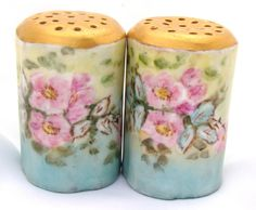 BEAUTIFUL ANTIQUE ROSENTHAL PORCELAIN SALT & PEPPER SHAKERS SET