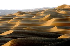 Taklamakan Desert / Silk Road...