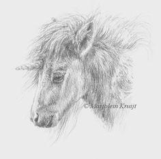 #Unicorn   #eenhoorn #pencildrawing  #unicornbaby #unicorns #mythicalanimals #pencilart #sketch #horsesketch #shetlandpony ART by Marjolein Kruijt