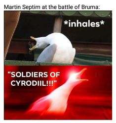 Hamilton memes never get old. Alexander Hamilton, Really Funny Memes, Haha Funny, Funny Stuff, Funny Duck, Funny Things, Hamilton Lin Manuel Miranda, Hamilton Fanart, Hamilton Musical