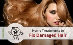 Home Treatments to Fix Damaged Hair In our quest for beautiful hairstyles, we often do things that damage our hair #nature #health #remedies #herbal #Organic #homemade #apple #mask #natural #beauty