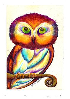 'Wide Eyed Owl' by Heather Reichard