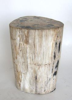 View This Item And Discover Similar Side Tables For Sale At   Petrified Wood  Stool.