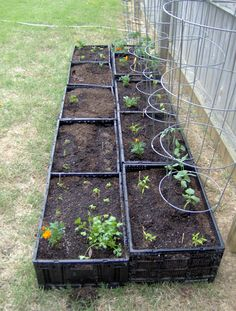 Organic Gardening Ideas A Square Foot Vegetable Garden Made with Plastic Crates Backyard Vegetable Gardens, Vegetable Garden Design, Garden Landscaping, Outdoor Gardens, Building A Raised Garden, Raised Garden Beds, Raised Beds, Plastic Milk Crates, Long Planter