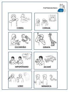 Vocabulário animais- LIBRAS
