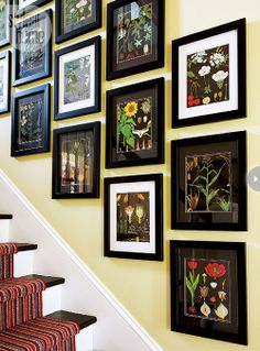 Floral art collection