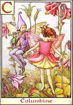 The image of the Columbine Flower Fairy above is one of Cicely Mary Barker's Flower Fairies. Description from pinterest.com. I searched for this on bing.com/images