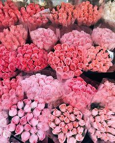 pink! <3
