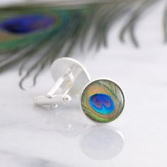 Silver cufflinks featuring a stunning vibrant Peacock feather miniature photography print