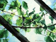 "Title:  Biltmore Grapevines Overhead.  The light shining through the leaves was lovely in a recent trip to Biltmore.  I was walking under an arbor and looked up to see the light brightly shining through the holes in leaves.  I also included my ""life interlacings"" in this watercolor painting.  You can see them throughout in a subtle way."