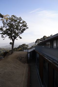 Modern additions to Konpira Shrine #architecture #Kagawa #Konpira