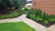Landscaping at the lovely Hilton Abingdon Landscaping, Sidewalk, Projects, Log Projects, Blue Prints, Side Walkway, Yard Landscaping, Walkway, Landscape Architecture