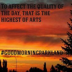 #goodmorningparkland to affect the quality of the day, that is the highest of arts. #mornings #morning #motivation #morningmotivation #morningmemes