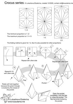 Diagram for Crocus kusudama
