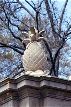 pineapple hospitality...represents the sea captains' homes that are abundant on the island