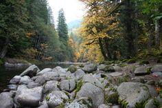 Salmon River, Oregon Cascades, TrailsNW.com