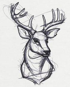 Sketchwork Stag design from Pencil Art Drawings, Cool Art Drawings, Art Drawings Sketches, Unique Drawings, Animal Sketches, Animal Drawings, Deer Sketch, Stag Design, Deer Drawing