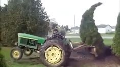 Tree Fights Back funny gifs lol gif humor funny pictures funny gifs funny images