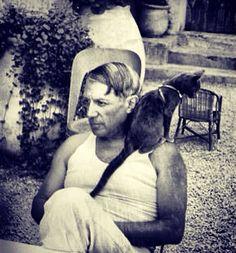 Picasso + cat