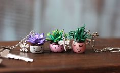Couple Keychain Christmas Small Gift Cute Keychain Succulent Pot Jewelry Succulent Gift Handmade Keychain for Bag Sweet Gift Idea for Family