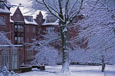 Mount Holyoke in the snow.  (This was my first-year dorm.)  Sigh.