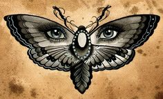 Butterfly Eyes by Thea Fear Blue Eyed Insect Surreal Canvas Art Print – moodswingsonthenet