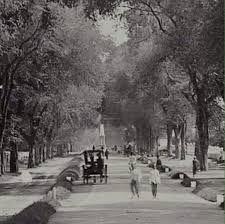 Tugu Jogja jaman dulu (antara th Dutch East Indies, Semarang, Yogyakarta, Antara, Old City, Old Pictures, Jakarta, Netherlands, The Past