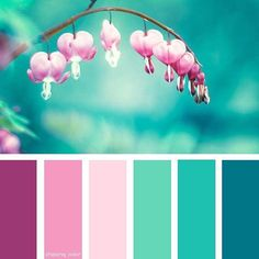 Shades Of Bleeding Hearts (Photo Credit: www.trendhunter.com) #mintgreen #pink #purple