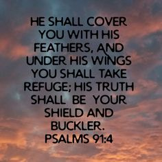 Under His Wings, Scripture Pictures, Psalm 91, Holy Spirit, Blessing, Angels, Words, Holy Ghost, Angel