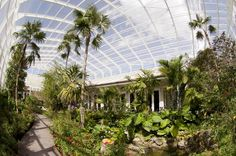 The Lisa D. Anness Butterfly Garden at the Fairchild Tropical Botanic Garden in Coral Gables, FL displays host plants for more than 30 species of native butterflies, serving as an important educational resource for local gardeners.