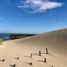 #europe #eurotrip #lithuania #curonianspit #sand #sea #sky #dunes #sandyhill #clouds #nationalpark #pawprints #desert #lovelyview #landscspe #iphonephotography #nofilter #sopeaceful