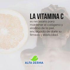 La alimentación determina el estado de tu piel. Y en este caso la vitamina C será muy útil para mantenerla elástica y evitar las #LíneasDeExpresión prematuras.#skincare #vitaminas #piel #pielsuave #alfaderma #cuidadodelapiel #cremas #naturalcosmetics #cosmetics #nature http://ift.tt/2xdv48n Síguenos en http://ift.tt/2v4IY7x