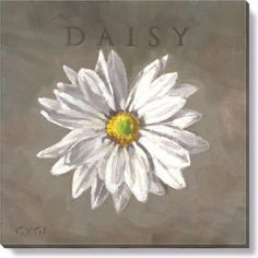 Gallery Wrap on Wood Frame ~ Daisy Ideal for any room, mix and match your favorites into groupings. Gygi has created looks that fit your home from botanicals, birds, nautical, seasonal and more… Each
