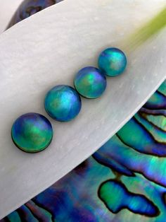 themagicfarawayttree: Blue Eyris Pearls - Pearls from the sea creatures known as abalone are incredibly rare. They cannot be cultured like the pearls from mussels and oysters; abalone are all hemophiliacs. They bleed to death when injected with a nucleus.