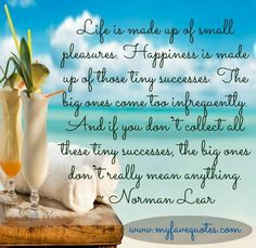 Life Is Made Up Of Small Pleasures. Happiness Is Made Up Of Those Tiny Successes. The Big One's Come Too Infrequently. And If You Don't Collect All These Tiny Successes, The Big Ones Don't Really Mean Anything.  -Norman Lear