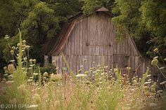 A Barn is Art without even knowing it.