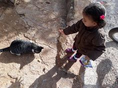 Sharing food   #Syrianchildren #beautiful #humanity #أطفال_سوريا #قطط #مخلوقات_جميلة Syrian Children, Cats, House, Gatos, Kitty Cats, Haus, Cat, Kitty, Home