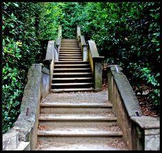 Solitary Steps - Florence, Florence Giardino di Boboli #TuscanyAgriturismoGiratola