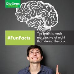 Your brain is much more active at night than during the day. During The Day, Human Body, Health And Beauty, Fun Facts, Health Care, Brain, Medical, Night, The Brain