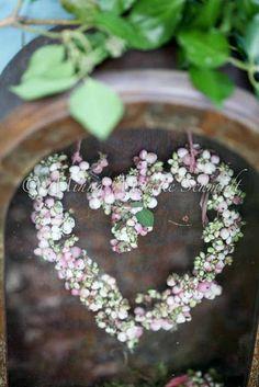 DIY snowberries wreath ‹ Blomsterverkstad