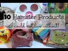 10 Hamster products I COULDN'T LIVE WITHOUT! - YouTube