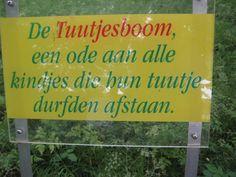 Gevonden in de tuin van KIna (Gent) en ja: de boom hangt vol: misschien iets voor op de kleuterspeelplaats?